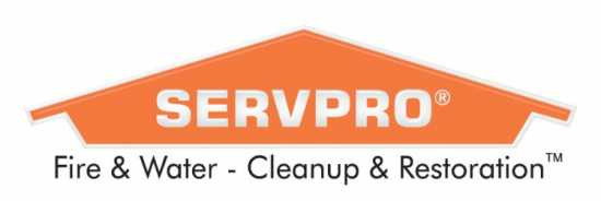 Cleaning and Restoration Technician